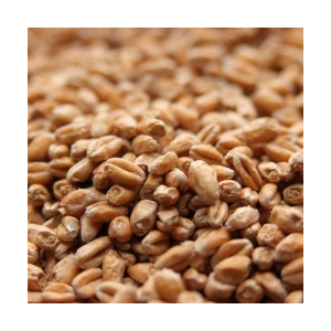 TRIGO CLARO WEYERMANN (PALE WHEAT MALT)