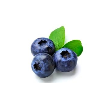 CONCENTRADO SABOR BLUE BERRY