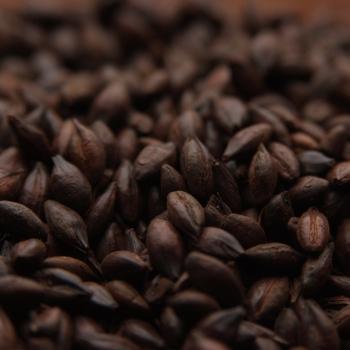 MALTA CARAFA TYPE 2 WEYERMANN (Malta Chocolate)